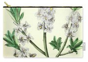 Vintage Botanical Illustration Carry-all Pouch