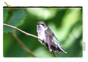 2757 -  Hummingbird Carry-all Pouch