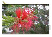 Australia - Red Flower Of The Callistemon Carry-all Pouch
