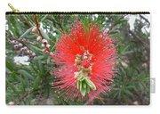 Australia - Callistemon Red Flower Carry-all Pouch