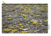 2d07512 Prairie Zinnia In Lost River Range Carry-all Pouch