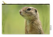 A European Ground Squirrel Standing In A Meadow In Spring Carry-all Pouch