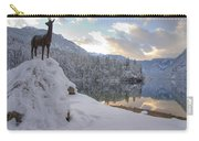 Alpine Winter Reflections Carry-all Pouch