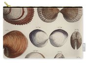 Aquatic Animals - Seafood - Shells - Mussels Carry-all Pouch