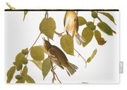 Audubon: Warbler Carry-all Pouch