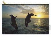 Bottlenose Dolphin Tursiops Truncatus Carry-all Pouch by Konrad Wothe