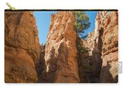 Spires On Navajo Trail Carry-all Pouch