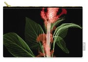 Cockscombs Flower, X-ray Carry-all Pouch