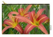 3 Daylilies Carry-all Pouch