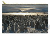 Emperor Penguin Aptenodytes Forsteri Carry-all Pouch by Pete Oxford