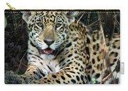 Jaguar Panthera Onca, Pantanal Carry-all Pouch