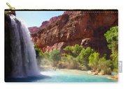 Landscape Pics Carry-all Pouch
