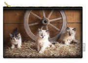 3 Little Kittens With The Wagon Wheel. Carry-all Pouch