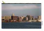 Madison Wisconsin Carry-all Pouch