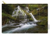 Panther Creek Falls Carry-all Pouch
