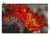 Red Hot Hedgehog  Carry-all Pouch