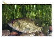 Rock Bass Carry-all Pouch