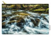Spring Along Anthony Creek Carry-all Pouch