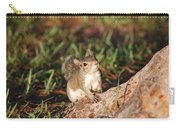 3- Squirrel Carry-all Pouch
