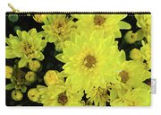 Sunshine Smiles Carry-all Pouch