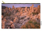 Tufa Towers - Mono Lake Carry-all Pouch