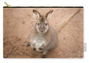 Wallaby Outside By Itself Carry-all Pouch