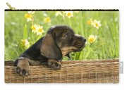 Wire-haired Dachshund Puppy Carry-all Pouch