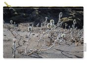 Woolly Willow Growing Wild In The Black Carry-all Pouch