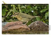 Worm-eating Warbler Carry-all Pouch