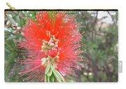Australia - Red Callistemon Flower Carry-all Pouch