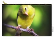3008 - Goldfinch Carry-all Pouch
