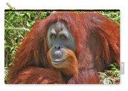 31- Orangutan Carry-all Pouch