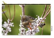3172 - Warbler Carry-all Pouch