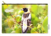 3457 - Bobolink Carry-all Pouch