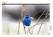 3553-015 - Indigo Bunting Carry-all Pouch
