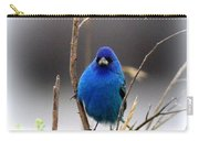 3553-16 - Indigo Bunting Carry-all Pouch