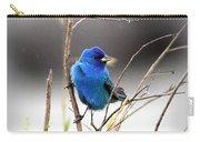 3554-027 -indigo Bunting Carry-all Pouch
