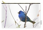 3563-006 - Indigo Bunting Carry-all Pouch