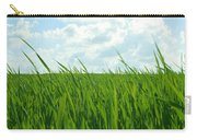 38744 Nature Grass Carry-all Pouch