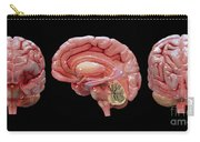 3d Rendering Of Human Brain Carry-all Pouch