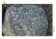 3da5793-dc Lichen On Rock Carry-all Pouch