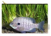 Bluegill Lepomis Macrochirus Carry-all Pouch