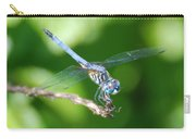 Dragon Fly Carry-all Pouch
