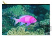 Fiji, Reef Scene Carry-all Pouch