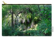 Gormon Falls Colorado Bend State Park.  Carry-all Pouch