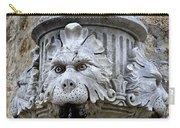 Public Fountain In Dubrovnik Croatia Carry-all Pouch