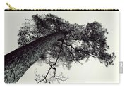 Trees And Sky Carry-all Pouch