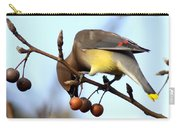 4424 - Cedar Waxwing Carry-all Pouch