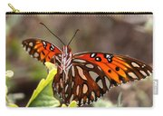 4529 - Butterfly Carry-all Pouch