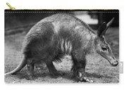 Aardvark Carry-all Pouch